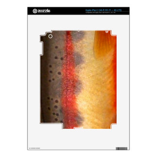 Golden Trout by PatternWear© iPad 3 Decals