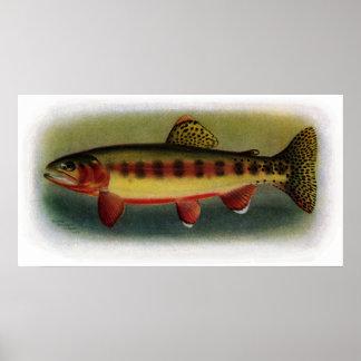 Golden Trout of Volcano Creek Poster