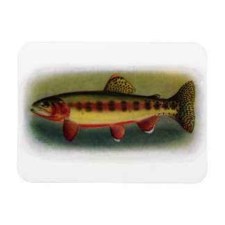 Golden Trout of Volcano Creek Magnets