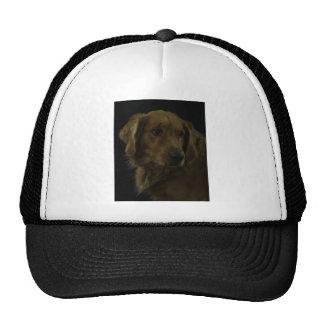 Golden Trucker Hat