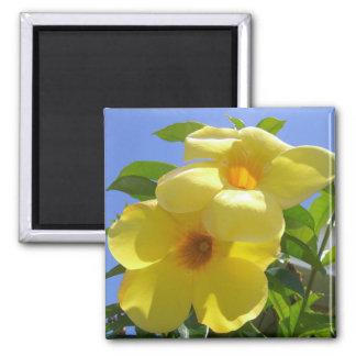 Golden Trumpet Flowers I 2 Inch Square Magnet