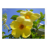 Golden Trumpet Flowers I Card
