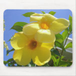 Golden Trumpet Flowers I Mouse Pad