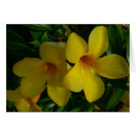 Golden Trumpet Flowers II Tropical Floral Card