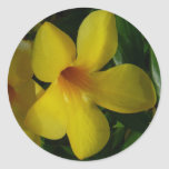 Golden Trumpet Flowers II Tropical Floral Classic Round Sticker