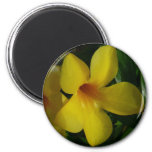 Golden Trumpet Flowers II Tropical Floral Magnet