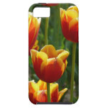 golden tulips iPhone 5 case
