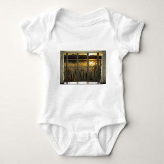 golden-twin-peaks-lake-window-view baby bodysuit