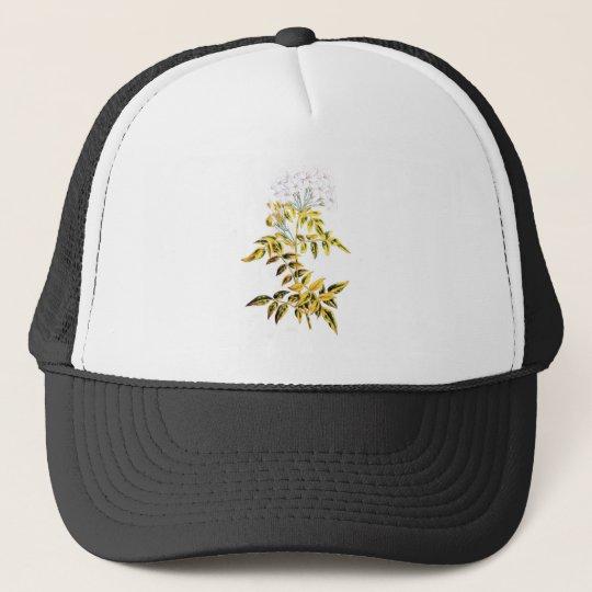Golden Variegated Jasmine Trucker Hat