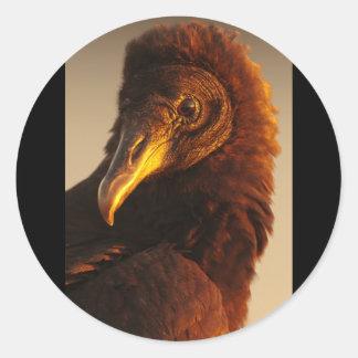 Golden Vulture Classic Round Sticker