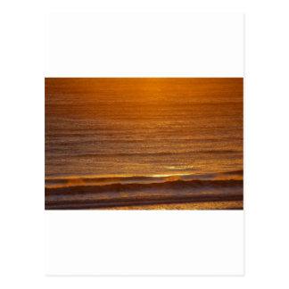 Golden Waves Postcard