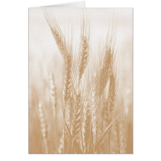 Golden Wheat Card