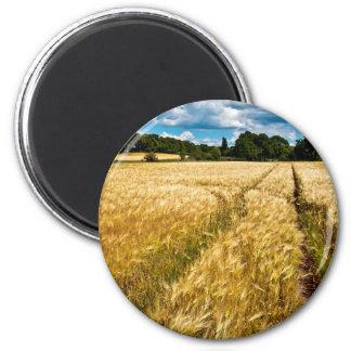 Golden wheat field in Brandenburg Magnet