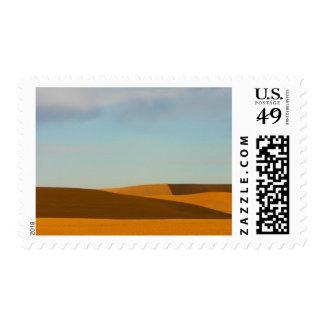 Golden Wheat Fields in Palouse Region Stamp