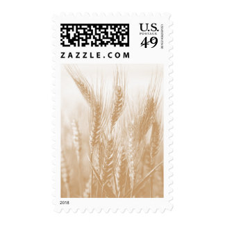 Golden Wheat Postage Stamp