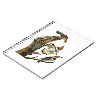 Golden-winged Woodpecker Audubon Birds of America Spiral Notebook