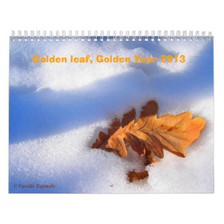 Golden Year 2013 Calendar