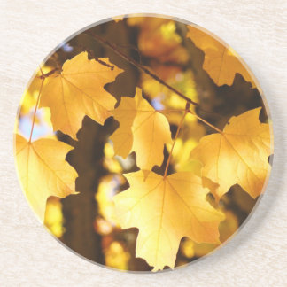 Golden Yellow Coasters sandstone coaster gifts