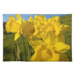 Golden Yellow Daffodil Flowers Glowing in Sunlight Place Mat