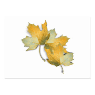 Golden Yellow  Fall Leaves Business Card