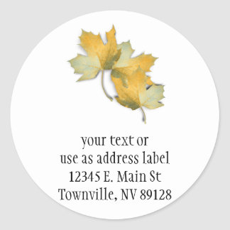 Golden Yellow  Fall Leaves Classic Round Sticker