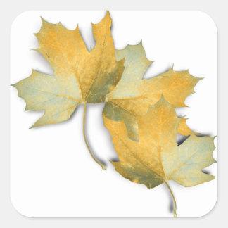 Golden Yellow Fall Leaves Sticker