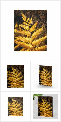 Golden Yellow Fern Art Photo by Claire E. Skinner