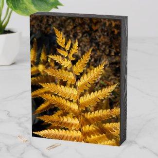 Golden Yellow Fern Autumn Leaf Wooden Box Sign