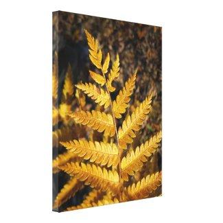 Golden Yellow Fern Fall Leaves Canvas Print