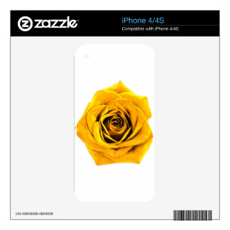 Golden Yellow Rose 20171027b Skin For The iPhone 4S