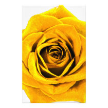 Golden Yellow Rose 20171027b Stationery