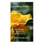 Golden Yellow Rose Bud Business Cards