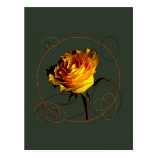 Golden Yellow Rose Gifts by Sharles Post Card
