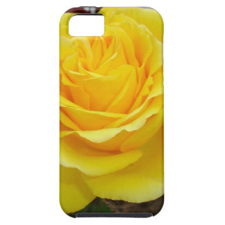Golden Yellow Rose with Garden Background iPhone SE/5/5s Case