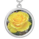 Golden Yellow Rose with Garden Background Pendant