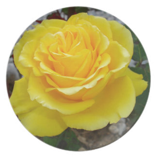 Golden Yellow Rose with Garden Background Party Plates