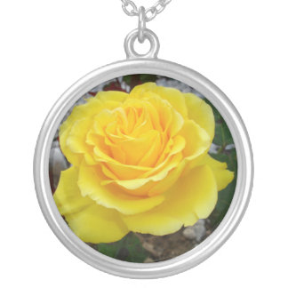 Golden Yellow Rose with Garden Background Round Pendant Necklace