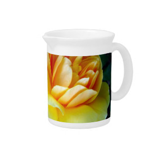 Golden Yellow Roses Beverage Pitcher