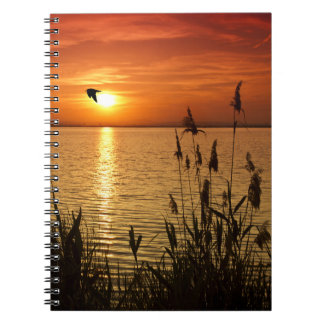 Golden Zen Sunset Notebook
