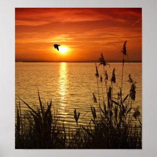 Golden Zen Sunset Poster