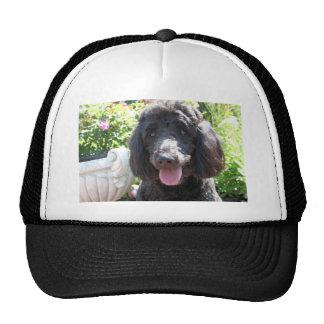 GoldenDoodle Abby 1 Trucker Hat