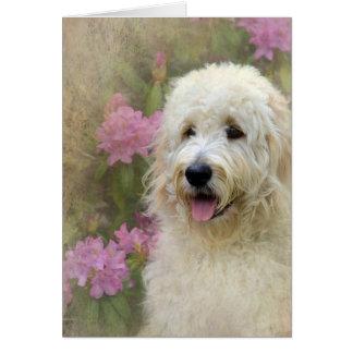 Goldendoodle con textura tarjeta de felicitación