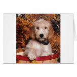 Goldendoodle in a basket greeting cards