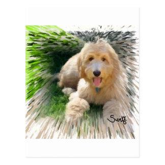 Goldendoodle Labradoodle Postcard