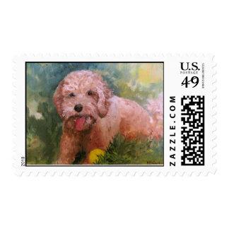 Goldendoodle/ Labradoodle Stamp
