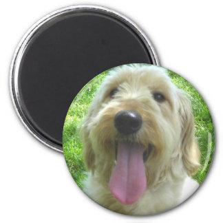 Goldendoodle Products Refrigerator Magnet