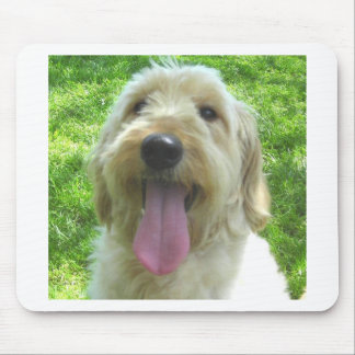Goldendoodle Products Mouse Pads