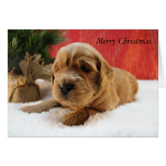 Goldendoodle Puppy Christmas Card