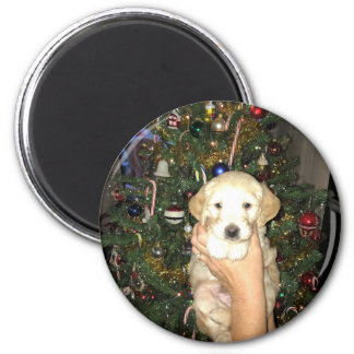 GoldenDoodle Puppy With Christmas Tree Magnet
