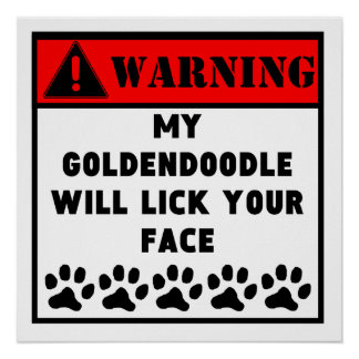 Goldendoodle Will Lick Your Face Poster